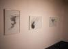 Exposition Galerie du Faouëdic 05