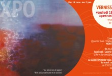 Terminée, Exposition  : Galerie Dynamo (Montpellier)